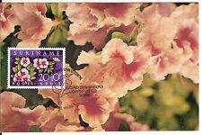 Surinam Suriname FDC Maximum Card Flower