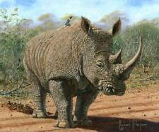 "ORIGINAL RICHARD HARPUM ""Kruger White Rhino"" National Park South Africa PAINTING"