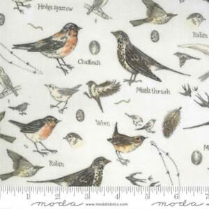 Botanicals 16910-11 Moda Fabrics Birds In Nature Parchment Janet Clare