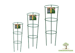 Conical Cage Frame Metal Plant Supports Herbaceous Peony 48cm 60cm 75cm