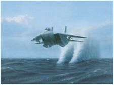 Dru Blair print, Tomcat!, Grumman F-14A, signed only edition
