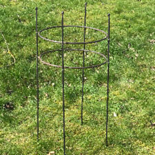 Garden Metal Plant Supports Rod Ring Hoop Rusted Style 500mm high x 600mm wide
