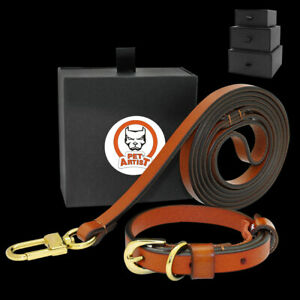 Real Leather Dog Collar and Lead set Luxury Small Dog Chihuahua Collar Brown