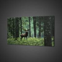 STAG RED DEER IN THE GREEN FOREST MOUNTED CANVAS PRINT WALL ART PICTURE PHOTO
