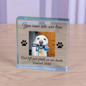 Personalised Glass Block Token Paw Prints on our hearts Pet Memorial Dog Cat