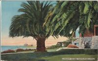 Vintage Postcard Yacht Club Oakland California CA
