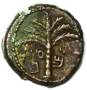 Ancient Judaea Bar Kochba Revolt Jewish AE Coin (132-135 AD, Palm, Grape) - VF