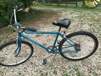 Vintage Schwinn King Sting  Like Boys Cruiser BMX 5 Speed Racing Bike