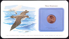 Manx Shearwater Isle of Man GB 1979 Coin on Bird Preservation Card Birds