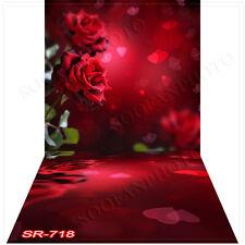 Valentine10'x20'Computer/Digital Vinyl Scenic Photo Backdrop Background SR718B88