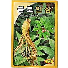 20 PCS Korea Wild Ginseng Vegetable Herb Seed Korea Panax Cultivation