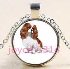 Cavalier King Charles Spaniel Cabochon silver Glass Chain Pendant Necklace #4196