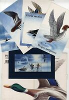 Suomi Finland 1993 water birds stamps MNH sheet + 5 postcards in folder