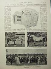1898 PRINT ~ SALE OF ARABIAN HORSES AT CRABBET PARK PADDOCK RESTAURANT CAR