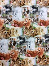 Playful Kitten Collection For Spx Fabrics Patt 21500 100% Cotton Fabric