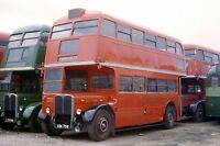 London Transport RT1499 Richmond 1980 Bus Photo