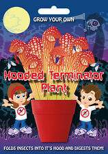 Fun Seeds Grow Your Own Hooded Terminator Plant (GCFUNSEEDHOODTERM)