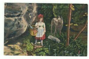 TN Rock City Gardens Tennessee - antique linen post card Little Red Riding Hood