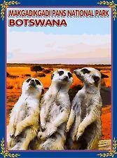 Botswana Meerkat Makgadikgadi National Park AfricaTravel Poster Advertisement