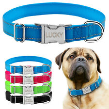 Reflective Small Large Dog Collar Heavy Duty Buckle & Personalised Nameplate