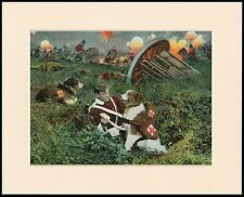 BORDER COLLIE RED CROSS WAR RESCUE DOGS GREAT DOG PRINT READY MOUNTED