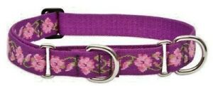 "Lupine Lifetime COMBINATION or Martingale Dog Collar 3/4""x 2 sizes - ROSE GARDEN"