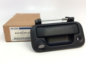 Ford F-250 F-350 F-150 Black Tailgate Handle With Fixed Backup Camera Hole OEM