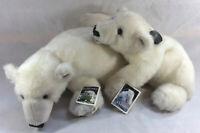 RARE Denver Zoo Plush Polar Bear Cubs Klondike and Snow Stuffed Animals NWT