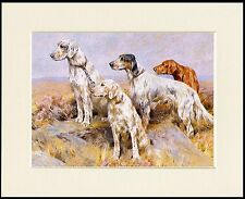 ENGLISH SETTER DOG GROUP LOVELY DOG PRINT MOUNTED READY TO FRAME