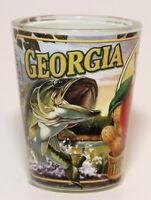 GEORGIA STATE MURAL SHOT GLASS SHOTGLASS