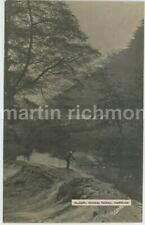 Sheffield, Rivelin Valley, Sneath Real Photo Postcard, C033