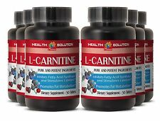 Muscle Gain Fat Burner & Energy L-CARNITINE 500MG 6 Bottles