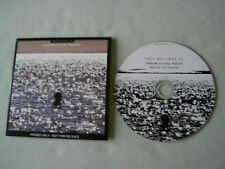 THIS BECOMES US FT. BLACK FRANCIS Painter Man Is Coming (Radio Edit) promo CD