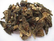 Morcheln Spitzmorcheln 50 g Beutel Morchella conica ( Morchella Esculenta)