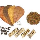 25-piece Shrimp Kit, Mineral Balls, Cholla Wood, Almond Leaves, Alder Cones