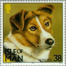 Isle Of Man - 1996 - Mongrel (Canis lupus familiaris) - Mnh Stamp