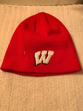 Wisconsin Badgers Knit Cap Big 10 High Relief Embroidered Logos Ncaa New Madison