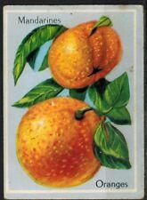 Carte Chromo - Image -Oranges - Mandarines - Fruits - Réf.177