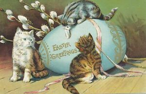 EASTER - Three Cats and Huge Easter Egg