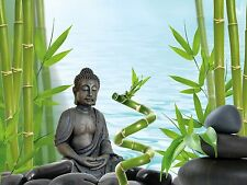 Tetra bouddha/bamboo background poster aquarium fish tank aquatic fond mer