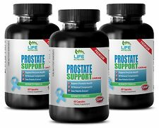 Detoxify Your Body Caps - Prostate Support 1345mg - Age Male Less Vitamin B6 3B
