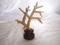 Corail corne de cerf sur socle N°1 /  cabinet de curiosité Coral shell vintage