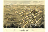 Map of Pleasant Hill Missouri; Antique Map; Pictorial Birdseye Map, 1869