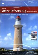 Video 2 BRAIN PC Adobe After Effects 6.5 Profi-Workshop