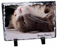 Cat in Ecstacy 'Yours Forever' Photo Slate Christmas Gift Ornament, AC-3ySL