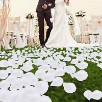 1000pcs Silk Flower Rose Petals Wedding Party Decoration White Favors Decor~.