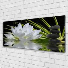 Glasbilder Wandbild Druck auf Glas 125x50 Blume Steine Wasser Pflanzen