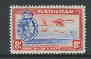 Bahamas - 1938, 8d Blue & Red, Greater Flamingo Bird stamp - m/m - SG 160
