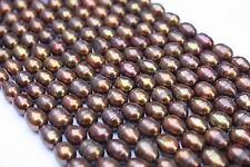 OV281 Zuchtperlen Strang Süßwasser Perlen Schmuck ohne Halskette 8-9mm Oval