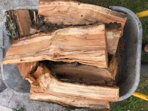 Smokerholz Kirsche 1 kg (Auch zum grillen oder drechseln)